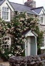 Storehouse Cottage B&B